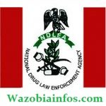 NDLEA Recruitment Aptitude Test Results 2020 – How to Check NDLEA Results