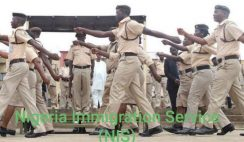 Nigeria Immigration Service (NIS) Recruitment 2020