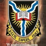 University of Ibadan (UI) Academic Staff Recruitment 2020 – Apply Now