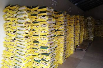 Friends and Associates of Rotimi Amaechi Amaechi Donates 12,000 Bags Of Rice For 23 LGAs