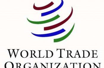 World Trade Organization Young Professional Programme 2021