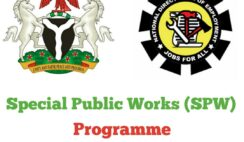 Special Public Works Programme 2020 - Application Form & How to Apply