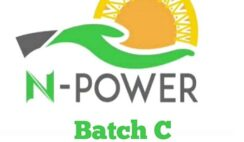 N-Power 2020 Registration: Re-Apply If You Fall Under The Following Category