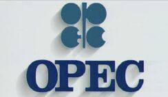 OPEC Young Professional Development Program 2020