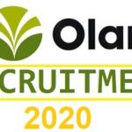 Massive Job Recruitment at Olam International – Apply Now