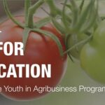 Oyo State Agribusiness Empowerment Program 2020 – Application Form Portal & How to Apply