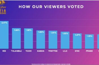 BBNaija 2020: How Viewers Voted