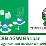 CBN AGSMEIS Loan For SME's & Agricultural Businesses – How to Apply Online