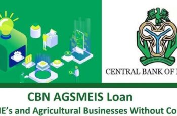 CBN AGSMEIS Loan For SME's & Agricultural Businesses - How to Apply Online