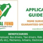 FG MSME Survival Fund Program – General Public Registration Portal for Individuals Without CAC Number – www.survivalfundapplication.com