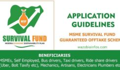 FG MSME Survival Fund Program - General Public Registration Portal for Individuals Without CAC Number - www.survivalfundapplication.com