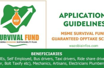 FG MSME Survival Fund Program - General Public Registration Portal for Individuals Without CAC Number - www.survivalfundapplication.com