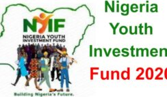Nigerian Youth Investment Fund (NYIF) Application Form Portal Opens 5th October, 2020