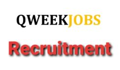 VACANCY: Social Media Handler at Qweekjobs - Apply Now