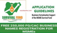 FG 250,000 New Business Names: Registration Guidelines for Survival Fund Formalisation Support