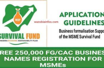 FG 250,000 New Business Names: Registration Guidelines for Survival Fund Formalisation Support