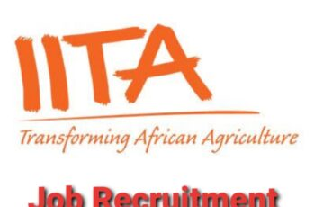 International Institute of Tropical Agriculture (IITA) Nationwide Job Recruitment - Apply Now