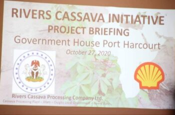 Rivers $12Millon Cassava Initiative to Create 3000 Jobs, Boost GDP