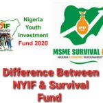 Difference Between NYIF And Survival Fund Scheme – Check Here