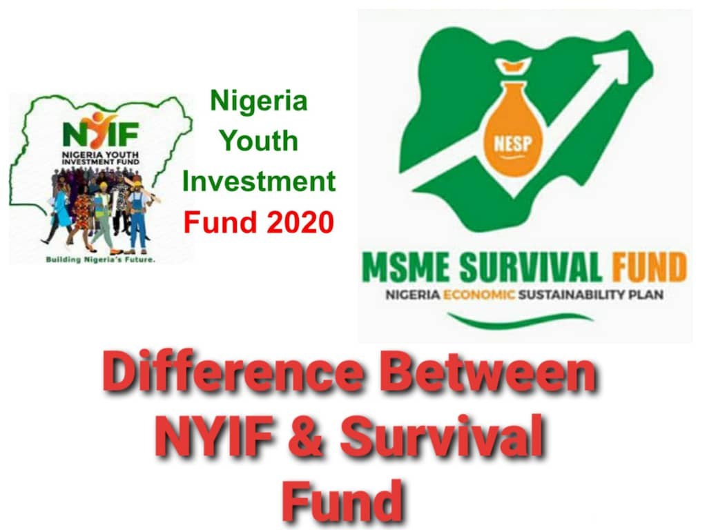 Difference Between NYIF And Survival Fund Scheme - Check Here