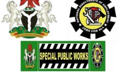 774,000 Jobs: FG Begins Selection of Successful Applicants for SPW Programme - Check Here