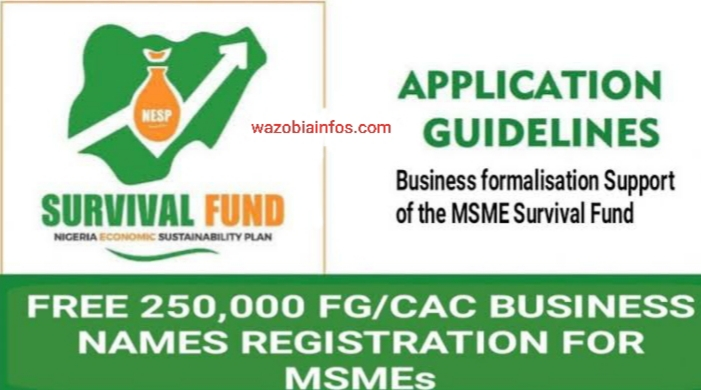 How To Apply For FG 250,000 Free New Business Names with CAC Registration