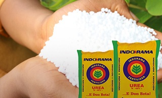Indorama Eleme fertilizer & Chemicals Limited (IEFCL) Job Recruitment
