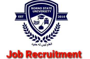 Borno State University Massive Job Recruitments (31 Positions)