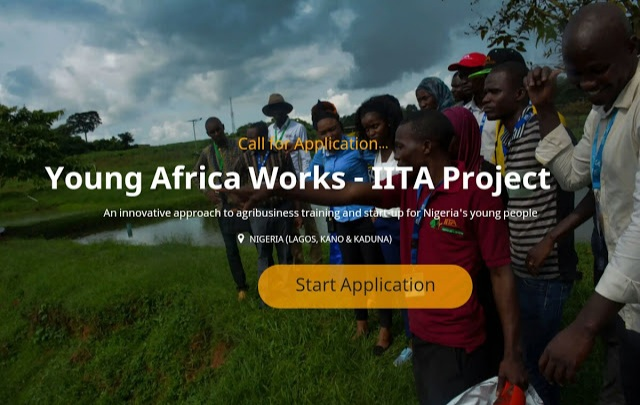 Young Africa Works IITA Project and Training Program For Nigerians - Apply Now