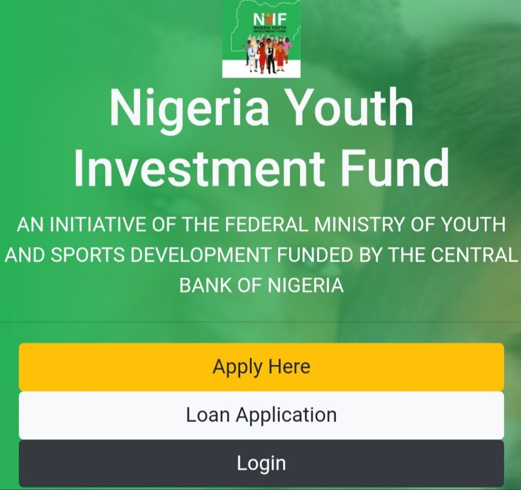 NYIF Loan Application Portal & Training Certificate - All You Need to Know