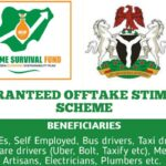 MSME Guaranteed Offtake Stimulus Scheme – How to Apply Online