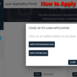 How to Successfully Apply for CBN Covid-19 Targeted Credit Facility Loan without BVN Wahala