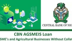 Nirsal AGMESIS Loan Application Portal & How to Apply Online