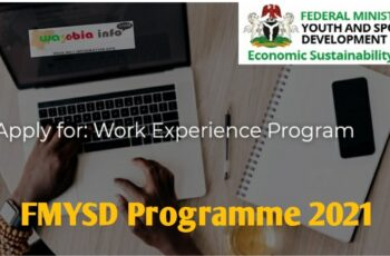 FMYSD Programme 2021 - Federal Ministry of Youth and Sports Development (FMYSD) Work Experience Application Portal