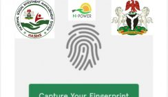 How to Check Npower Batch C Verification Status via NASIMS Portal