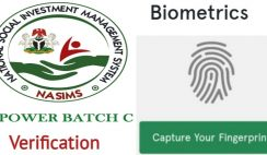 Reasons Why You Have Not Been Yet Shortlisted for NPower Batch C Verification