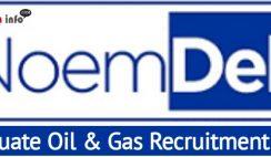 Graduate Oil & Gas Management Trainee Program 2021 at NoemDek Limited
