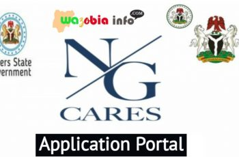 Rivers State NG-CARES Intervention Program 2021 Application Form Portal & How to Apply Online