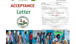 NPower Batch C Acceptance Letter: How To Successfully Fill & Upload Your Npower Acceptance Letter On Nasims Portal