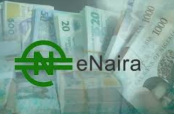 How to use eNaira