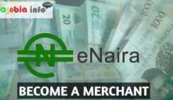 How to Become an eNaira Merchant in Nigeria and Start making Money