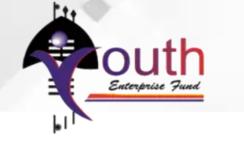 Youth Enterprise Revolving Fund